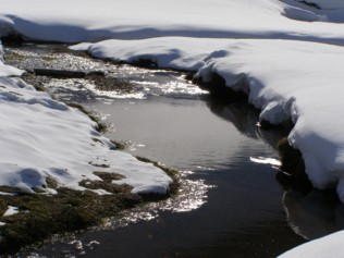 winterbach.jpg
